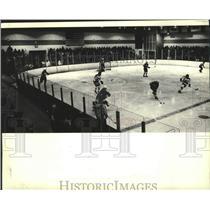 1982 Press Photo Milwaukee Admirals Professional Hockey Team At Wilson Park