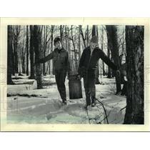 1985 Press Photo Robert Janowski and Allan Hopperdietzel carry sap to trailer