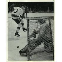 1974 Press Photo Houston Aeros in action on the ice. - hcs09257