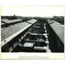 1980 Press Photo Resident Quarters for Chinese Peasants In The Henan Province