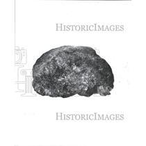 1980 Press Photo Royalty Rock Stone King Henry VIII