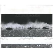 1984 Press Photo South Regatta Boat Race Lake Maggiore