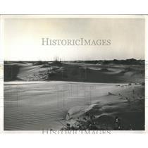 Press Photo Andrews State Park Panama City Day Dunes - RRX86137