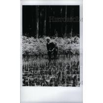 1979 Press Photo Japan Agriculture Rice - RRX46851