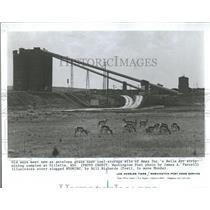 1977 Press Photo Amax Inc Belle Ayr Strip Mining