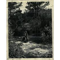 1938 Press Photo Colorado Rockies Flowers Follage - RRX73905