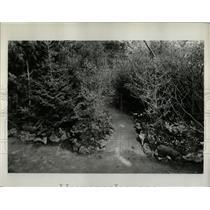 1932 Press Photo North America Flower Show