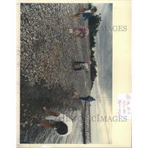 1988 Press Photo Beach-combing on coasts of Michigan. - RRX96365