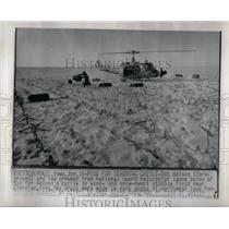 1975 Press Photo Bob Nelson National Guard Cattle Wind - RRX52817