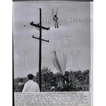 1959 Press Photo Parachutist David Herron Rough Landing - RRX70723