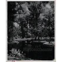 1963 Press Photo Ponce De Leon Spring Near Deland Flori