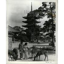 1977 Press Photo Nara Japanese Capital - RRX65385