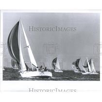 1982 Press Photo Suncoast Raceweek Boat Races Yacht