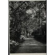 1930 Press Photo Tennyson's Lane - RRW82695