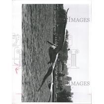 1963 Press Photo St Petersburg Municipal Pier - RRX91559