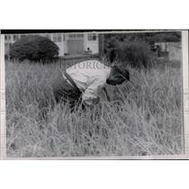 1963 Press Photo Japan Emperor Hirohito In Rice Field - RRW77081