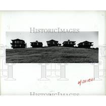 1985 Press Photo Michigan Cities Miro Oriental Cottage - RRW68091
