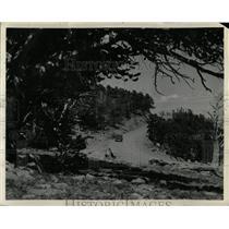 1940 Press Photo Mount Evans Scenic Byway Colorado - RRX75591