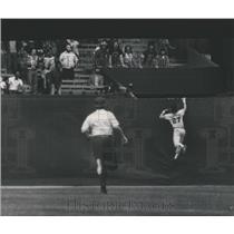1974 Press Photo Tiger's Richar Sharon climbs wall in vain pursuing Dick Allen's