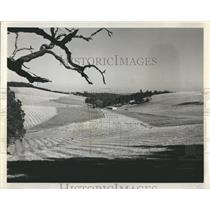 1971 Press Photo Mowed hay fields in Willamette Valley, Oregon