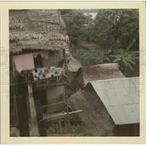 Press Photo Amazon Riverbank Iquitos Peru