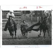 1981 Press Photo Rodeo Rider Bob Barthle Bulldogging at Pasco County Sherriff