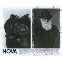 1982 Press Photo Charles Darwin NOVA Explores WGBH Boston - RSH95799