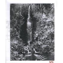 1957 Press Photo Rainbow River Florida - RSH85007