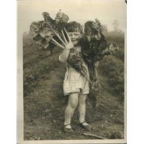 1929 Press Photo Person Farmer Crop Agriculture Grain