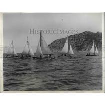 1934 Press Photo Catalina Harbor in Calif. yachts for boat race - nea71000
