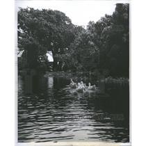 1960 Press Photo Duck Swim River Peaceful Air People - RRT76361