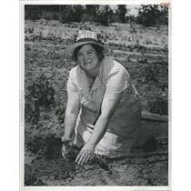 1947 Press Photo Michigan Cities USA - RRT01095