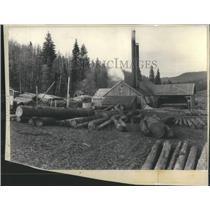 1940 Press Photo Sawmill File Forrest Colorado - RRS15031
