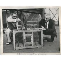 1933 Press Photo William Willsm Jr Game Warden - RRS98583