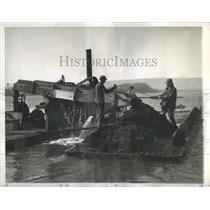 1937 Press Photo Coal Combustible Black Layer Rock - RRS04617