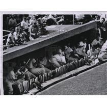 1955 Press Photo Cubs duck errant ball hit by Gene Baker that ricocheted dugout