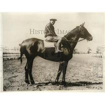 1929 Press Photo Kentucky Derby candidate Scarlet Brigade - nes03060