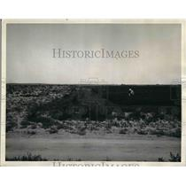 1937 Press Photo Crops Made Possible by Newlands Federal Reclamation Project