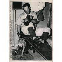 1951 Press Photo Dodgers Outfielder hank Edwards Training Camp - nes01150