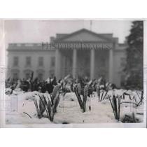 1938 Press Photo Heavy Snowfall Covers White House Grounds - neb16938