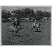 1954 Press Photo Venezuela Cowboys in the Big Cattle roundup in Santa Rita.