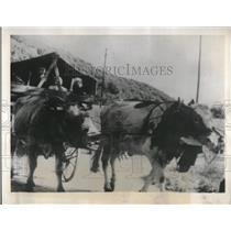 1939 Press Photo French Peasants Evacuate War Zone