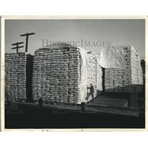 1940 Press Photo Huge Stacks of Pea Seeds Ready for Shipment in Montana