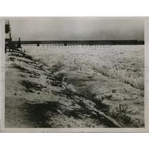 1929 Press Photo Danube River frozen in ice at Lobau Deer Gardens