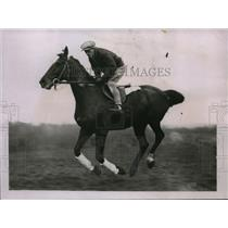 """1932 Press Photo """"Sea Soldier"""" to compete in Grand National Steeplechase"""