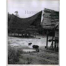 1955 Press Photo Village around Lake Toba Sumatra