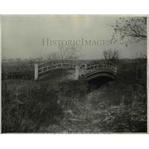 1929 Press Photo Lakeview Park arched foot bridge, one of the last remnants