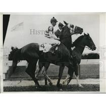1933 Press Photo Fingal to run in Ky Derby at Churchill Downs - nes25646