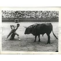 1929 Press Photo Jose Pastor faces off in the bull ring in Valencia Spain