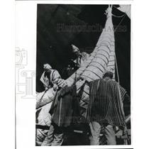 1970 Press Photo Safi Morocco Thor Heyerdahl's raft RaII ready for launch